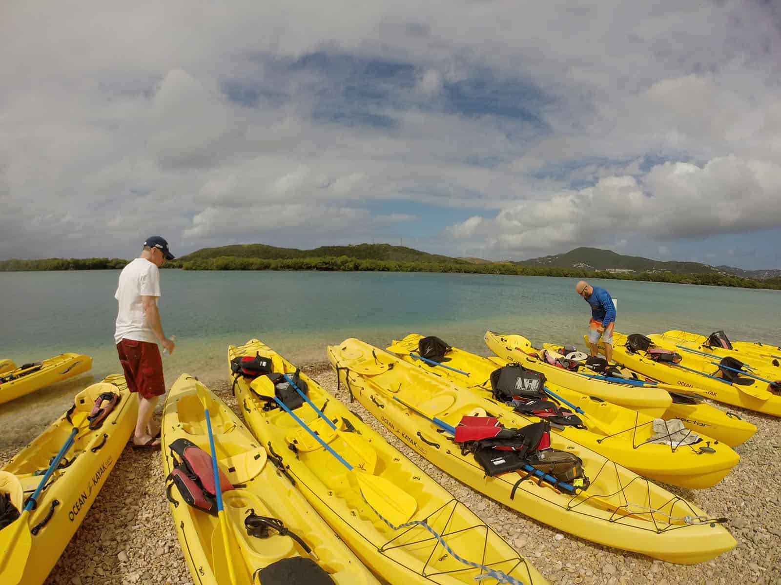 EcoTour in St Thomas at Cas Cay Mangrove Lagoon
