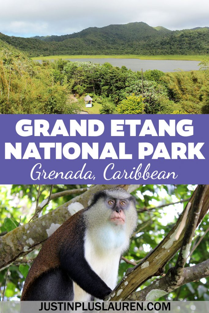 Grand Etang National Park is a beautiful protected forest reserve and nature park in Grenada, Caribbean. Here's how to plan your trip to Grand Etang Lake and Grand Etang National Park.