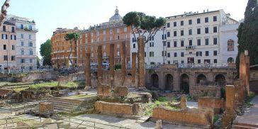 Cat Sanctuary Rome