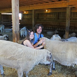 Finding Peace at Farm Sanctuary