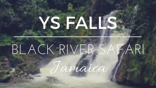 YS Falls and Black River Safari