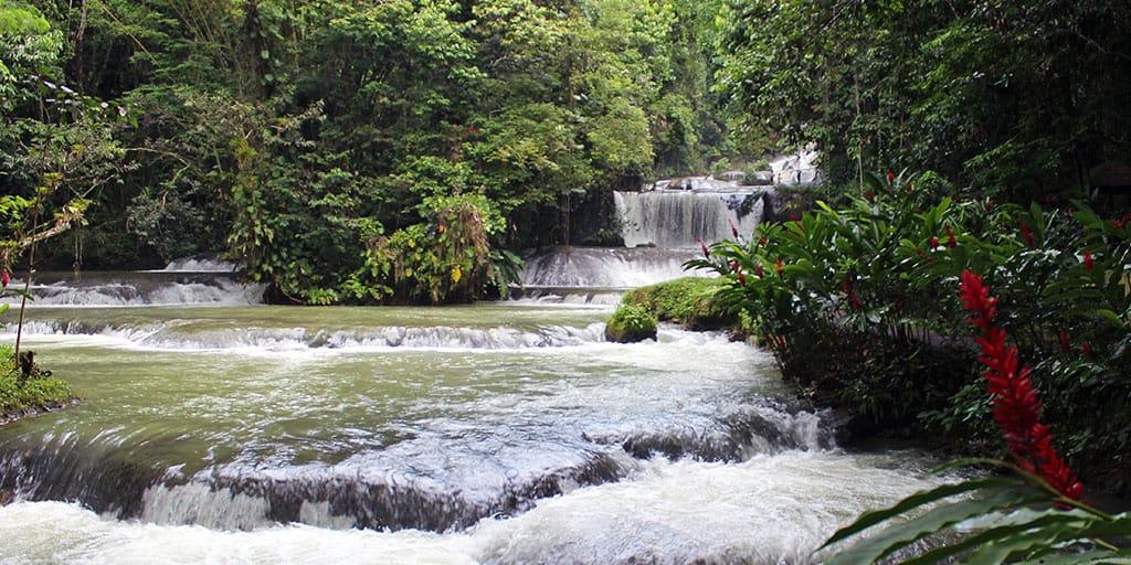 YS Falls and Black River Safari