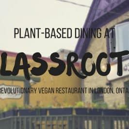 Glassroots Vegan Restaurant: Fresh & Local Cuisine