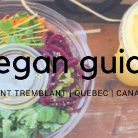 Mont Tremblant Vegan Dining in the Pedestrian Village