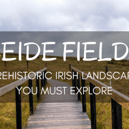 Ceide Fields: Prehistoric Irish Landscape You Must Explore