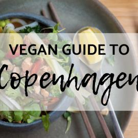Vegan Copenhagen Restaurant and Travel Guide