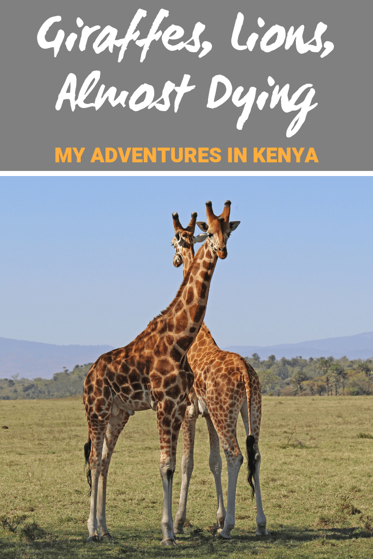 Giraffes, Lions, and Almost Dying: My Adventure in Kenya #Kenya #Safari #Adventure #TravelStories #TravelTips #Africa