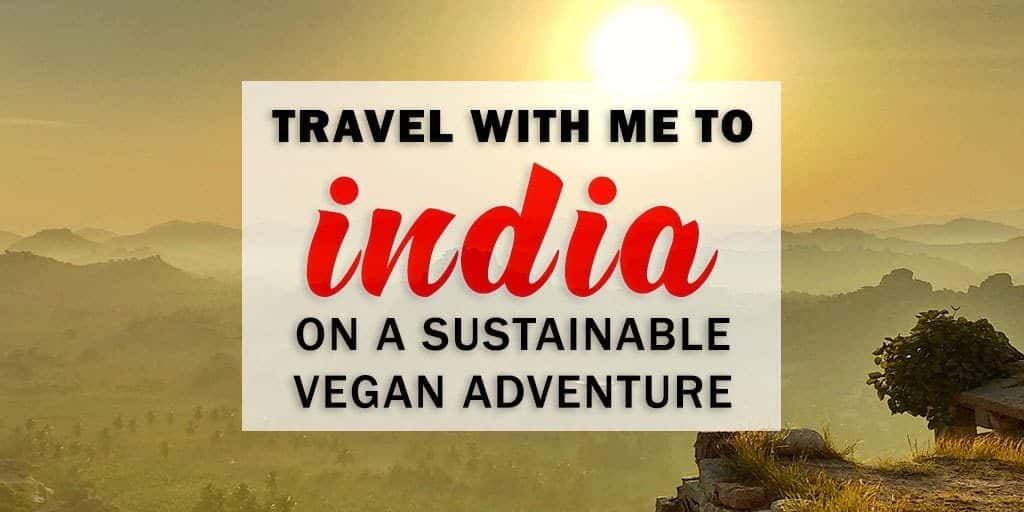 Let's Explore India Together on an Amazing Vegan India Adventure!
