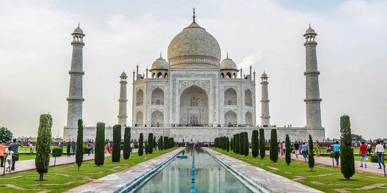 India Vegan Trip