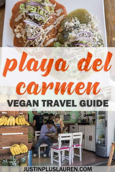 Vegan Playa Del Carmen: Mouthwatering Playa Del Carmen Restaurants You'll Love #PlayaDelCarmen #Mexico #Vegan #Vegetarian #Restaurants