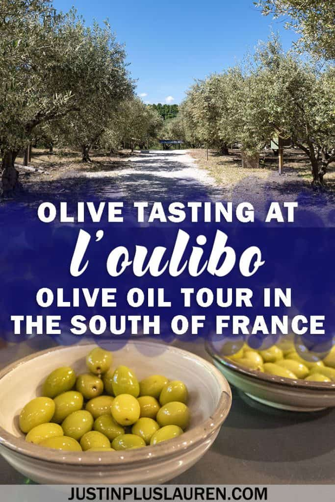 Tasting the Olives of Oulibo: A French Olive Oil Tour Seeking the Best Olive Oil in the World #France #SouthofFrance #Travel #Oulibo #OliveOil #Olives #Tour #Tasting #Food #Foodie