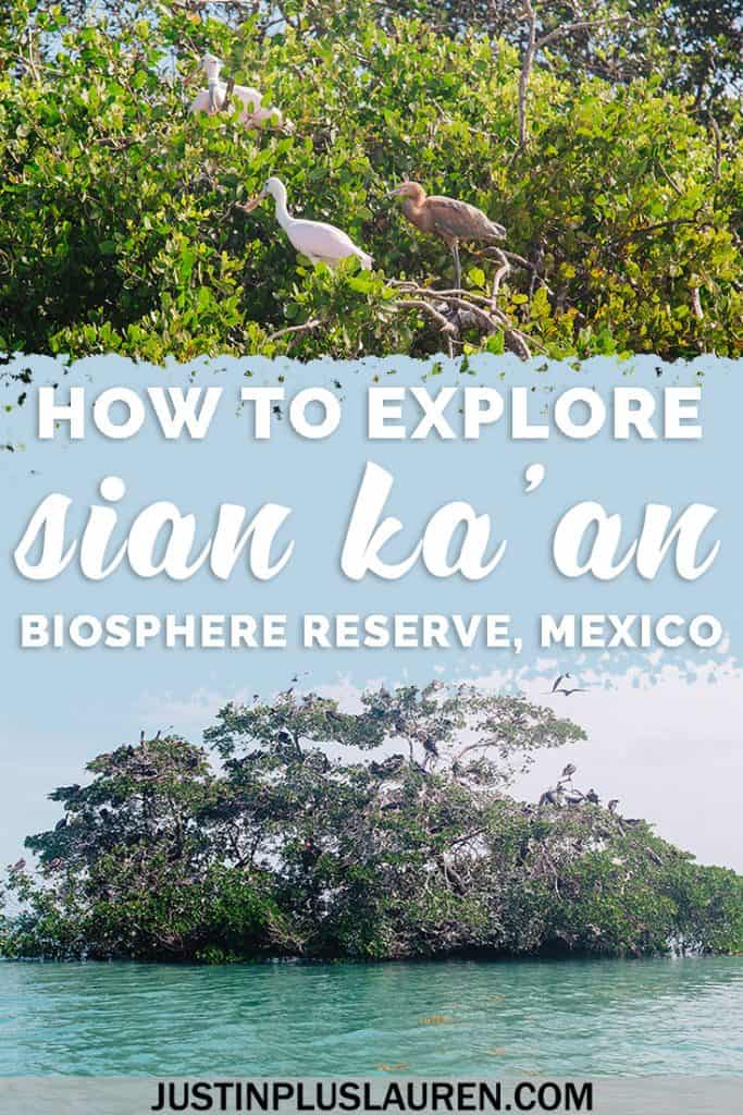 Sian Ka'an Biosphere Reserve in Mexico: The Perfect Guide for an Eco-Friendly Adventure #Mexico #Travel #Eco #SianKaan #Tour