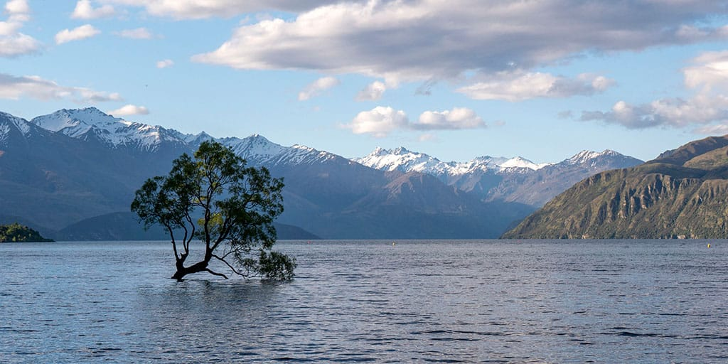 Things to do in Wanaka New Zealand