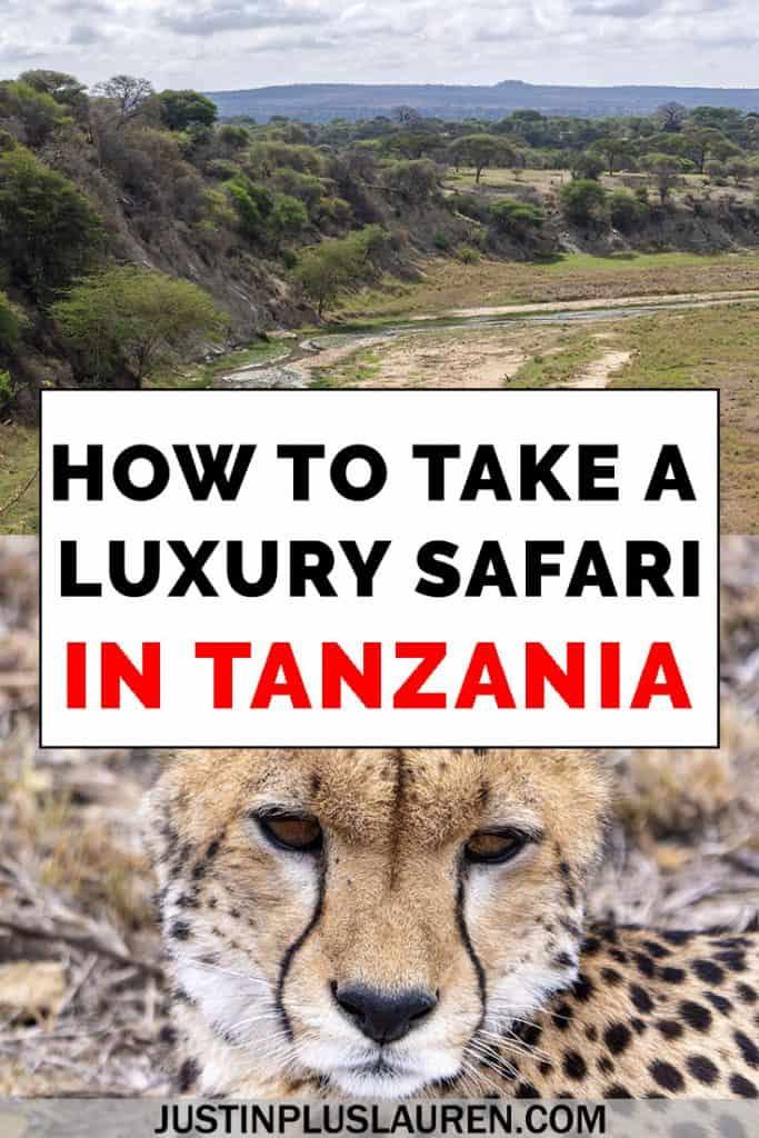 Luxury safari in Tanzania: Everything you need to know to book your dream African safari.