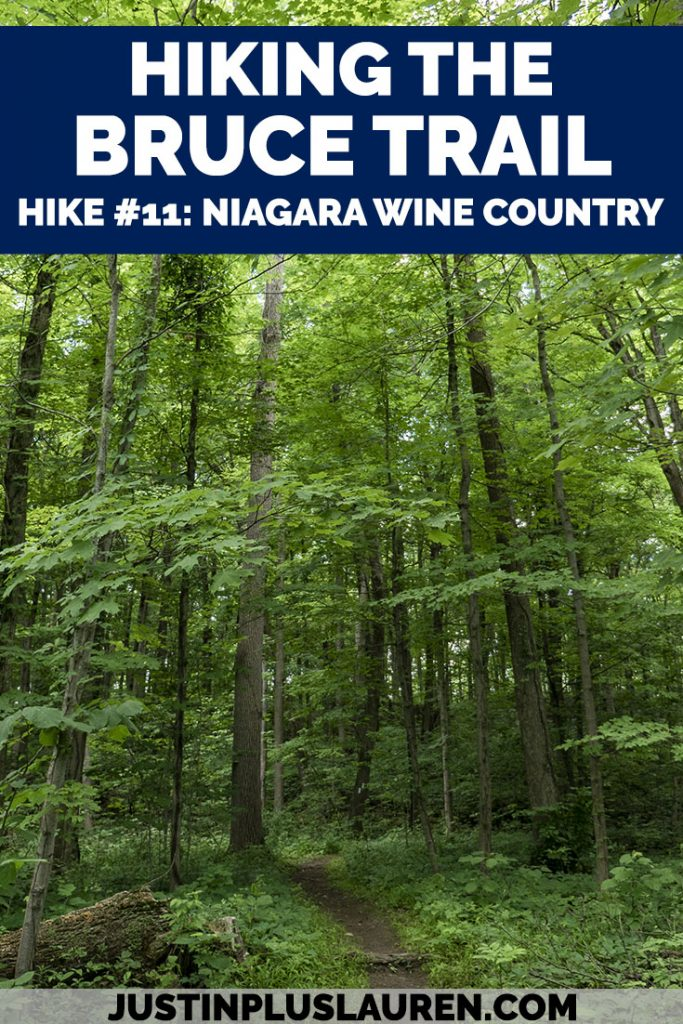 Follow along my journey as I hike the entire Bruce Trail in southern Ontario, Canada. It's a 900km trail from Niagara to Tobermory! This is hike #11 through Niagara wine country. #BruceTrail #Hiking #Ontario #Canada #Hikes