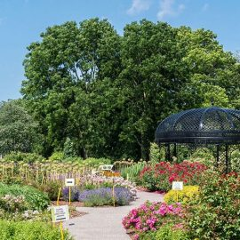 Best gardens in Toronto