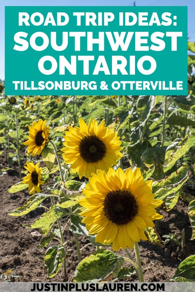 Searching for more Ontario road trip ideas? It's worth the drive to Oxford County and Ontario's Southwest! Here's a travel guide to the small towns of Tillsonburg and Otterville where you'll be amazed by the fascinating history and outdoor activities.