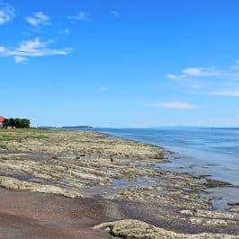 Discover Ile d'Orleans, Quebec City's Cornucopia